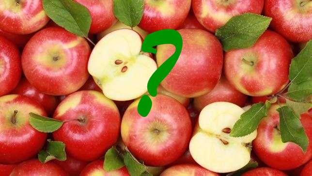 alma, fejtörő