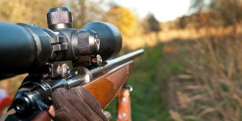 vadászat