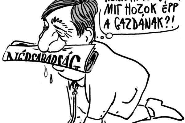 Mészáros Lőrinc