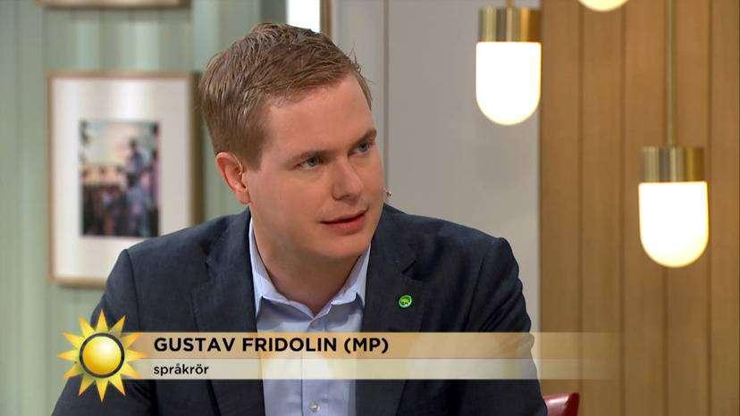 Gustav Fridolin