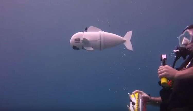 Robothal a tengerek kutatására