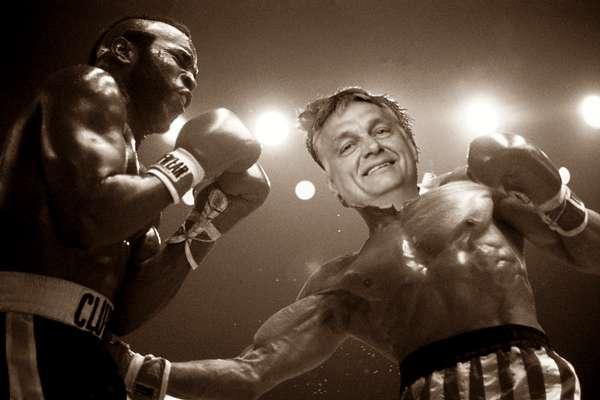 Orbán Rocky