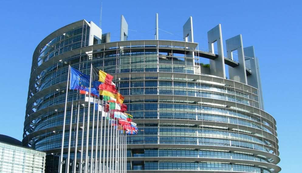 EP civil szervezetek hetes cikk