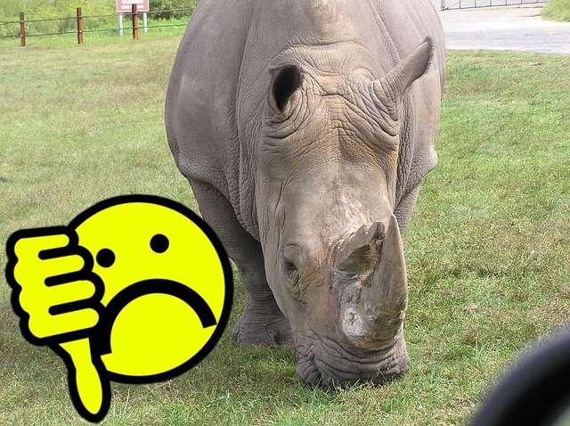 Hidvégi, a rinocéroszbőrű - a Fideszt érte sérelem a választás kapcsán