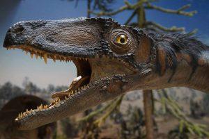 dinófaj