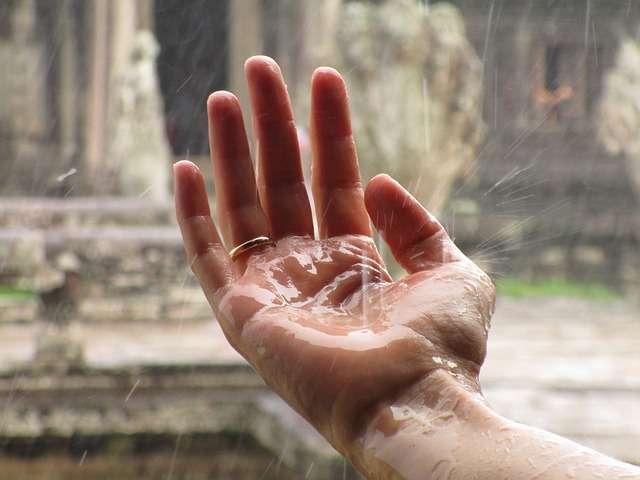 Eugenia S. Lee: .....sok érdekeset hoz ki az emberből a monszun, többek között hátranyilazás ügyben is.......