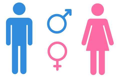 társadalmi nemek