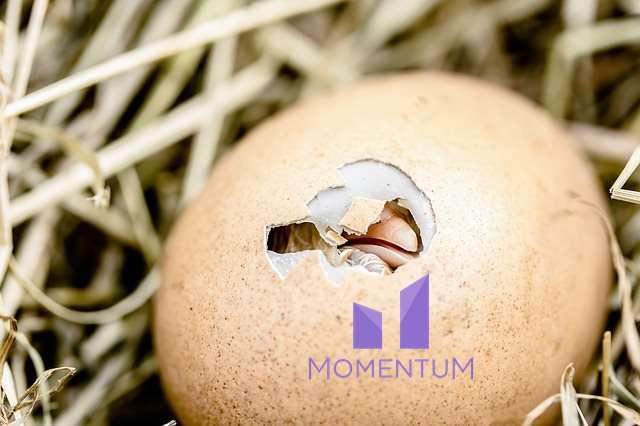momentum-szuletes