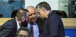 Orbán Daul