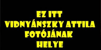 vidnyanszky