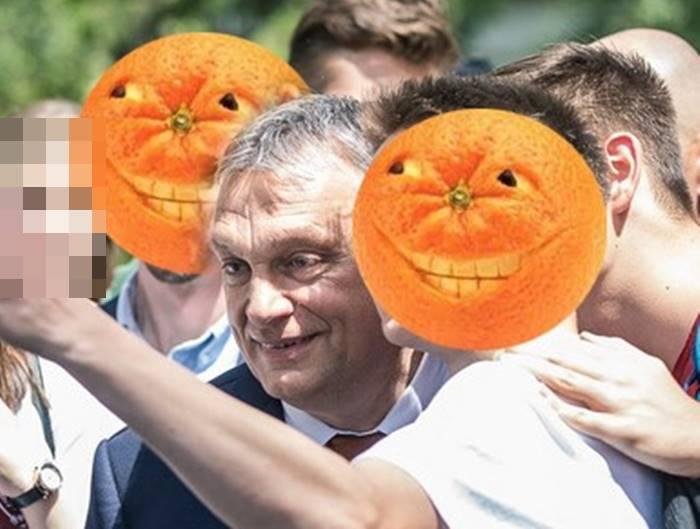 Orbán és a narancsfej