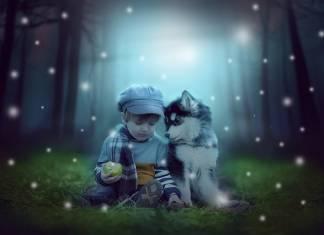 gyerek-kutya