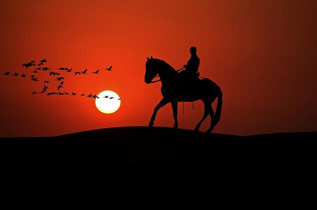 szijjarto-lovas