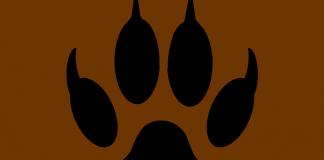 balatonszemesen-kutyatamadas