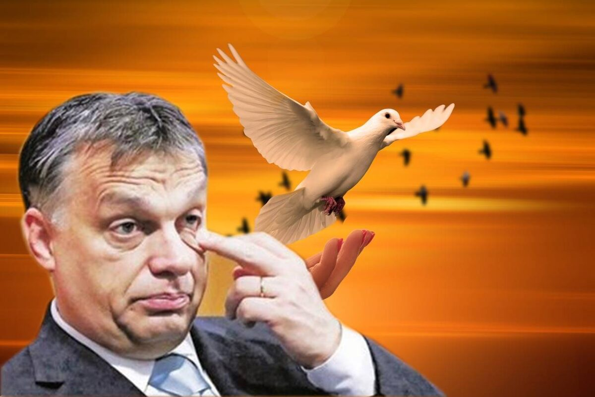 Nem magyar fülnek szánt mondatok Orbán szájából - A kis butus, ma, a Google-fordító korában?