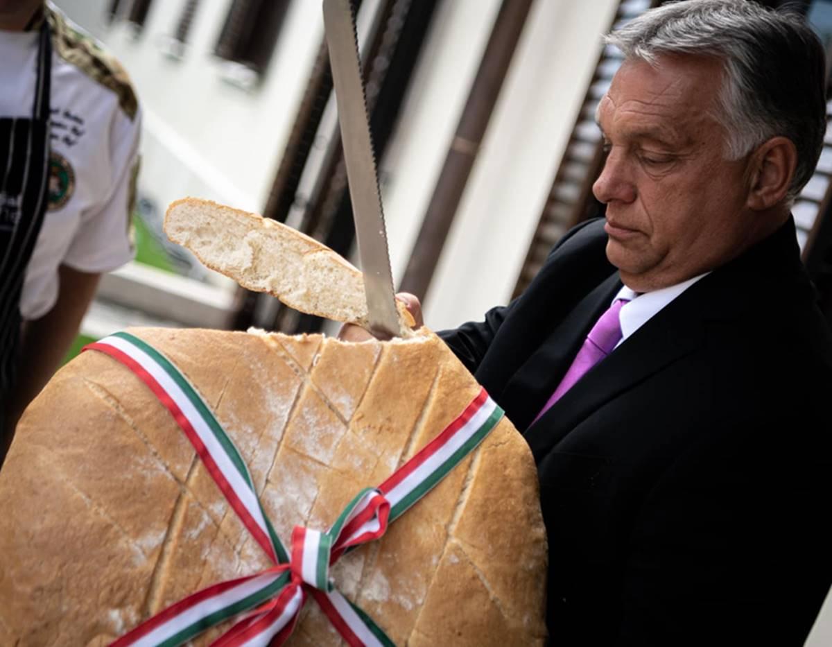 """Orbán """"munkavédelmi oktatásokon elrettentő példájú"""" új kenyér-szelése!"""