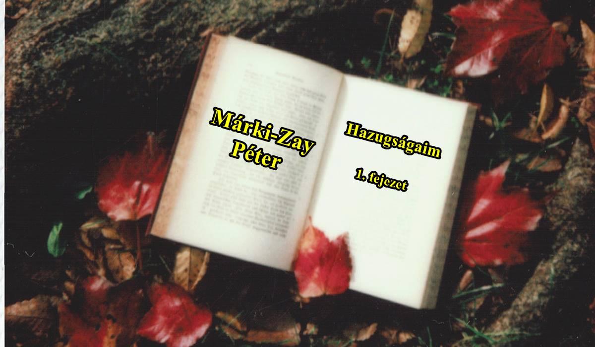 Márki-Zay hazugság-összes - Egy csokorban, a válaszokkal.....